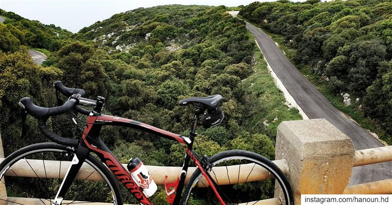 cylinglife cycling cyclingmylife willier willierbikes ...