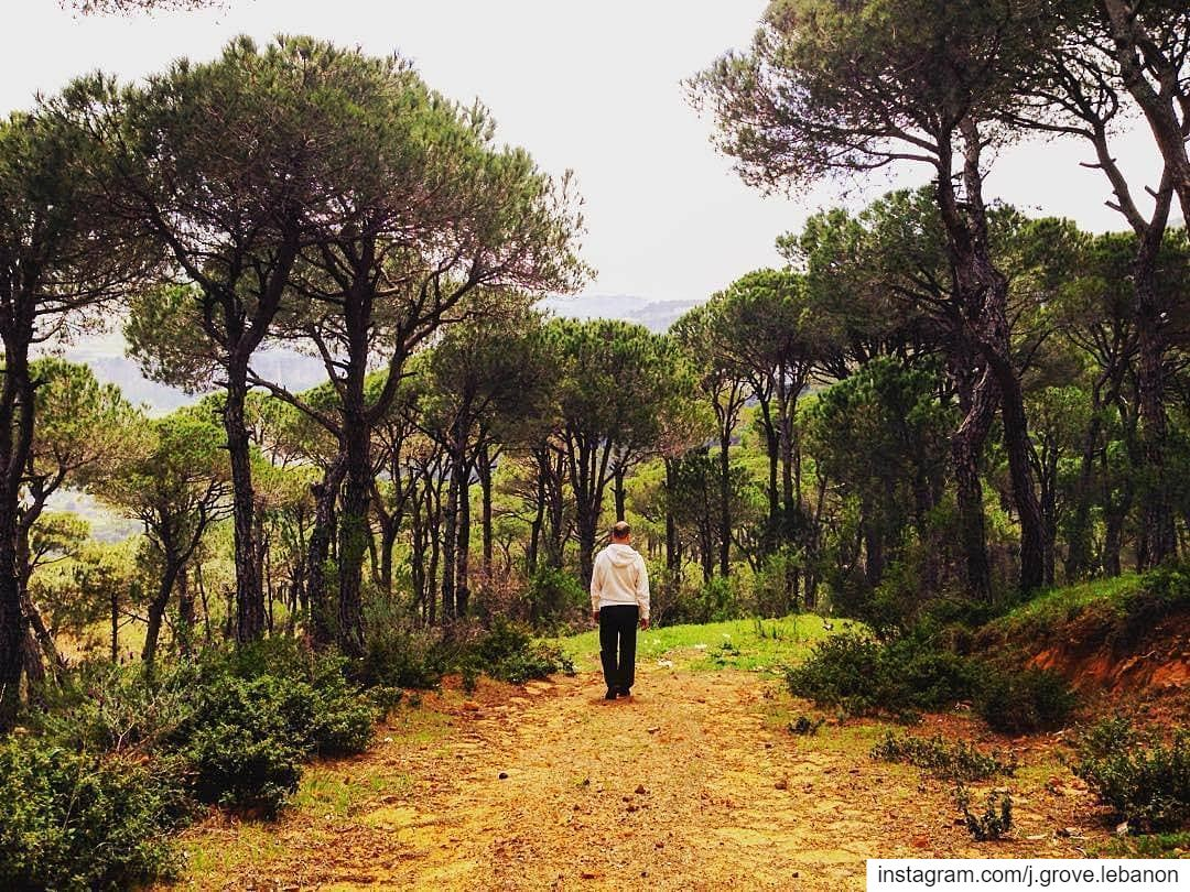 The benefits of green exercise are tried, true and proven: On ...