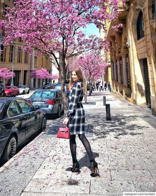 Hello spring! 🌺🌺🌺... lebanon inlebanon lebanontimes naturelovers... (Beirut Souks)
