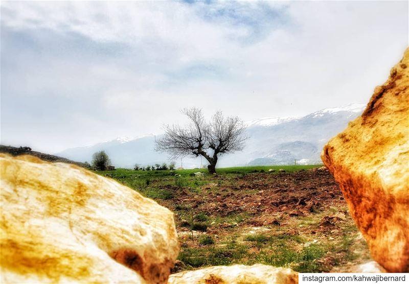 Saghbine lebanon hike hikingculture hiking naturephotography ... (Saghbîne, Béqaa, Lebanon)