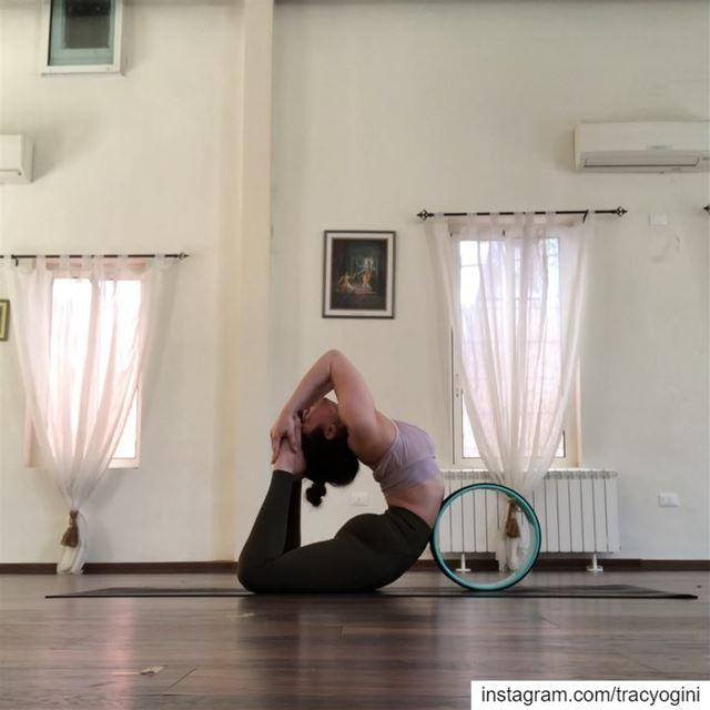Who has a yoga wheel and loves using it as much as I do? Try this... (Sarvam Yoga)