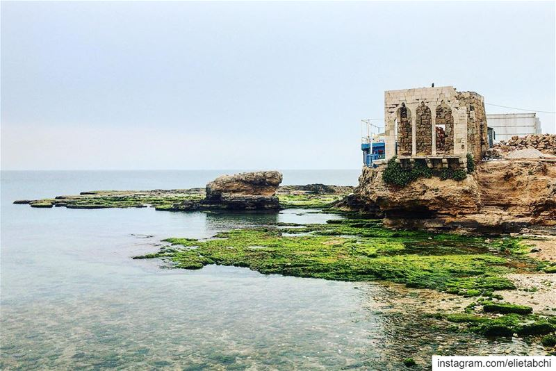 Morning from Bahsa 😍 lebanon  batroun  bahsa  beach  morning ... (Bahsa-Batroun)