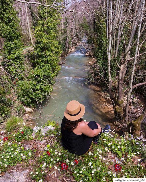 Tell the wild I'm home 👒..... neverstopexploring ... (El-Mukhtarah, Mont-Liban, Lebanon)