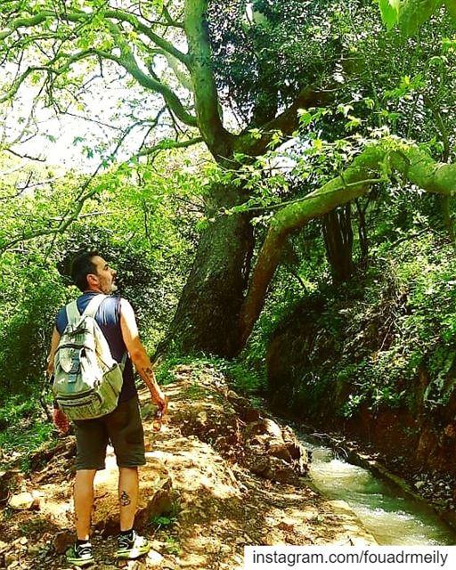 hikinglb hiking🌲 hiking👣 hikingshoes hikinglb🌳🍀🌿🍃☀️ ... (Naher El jouz)