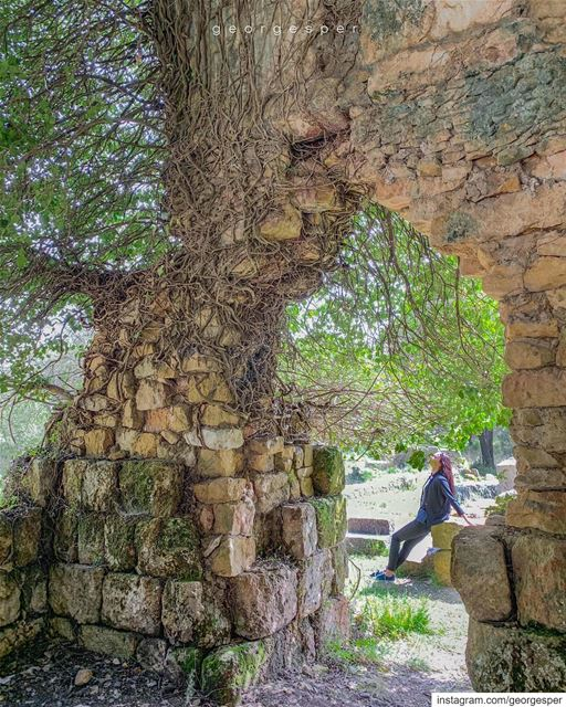 Abandoned Roman Baths site • Beit-Meri Lebanon 🇱🇧........ (Beit Meri, Mont-Liban, Lebanon)