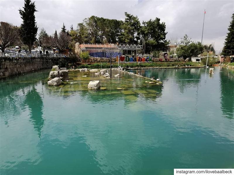 شعنينة مباركة من بعلبكHappy Palm's day Baalbeck IloveBaalbeck Lebanon ... (Baalbeck, Béqaa, Lebanon)