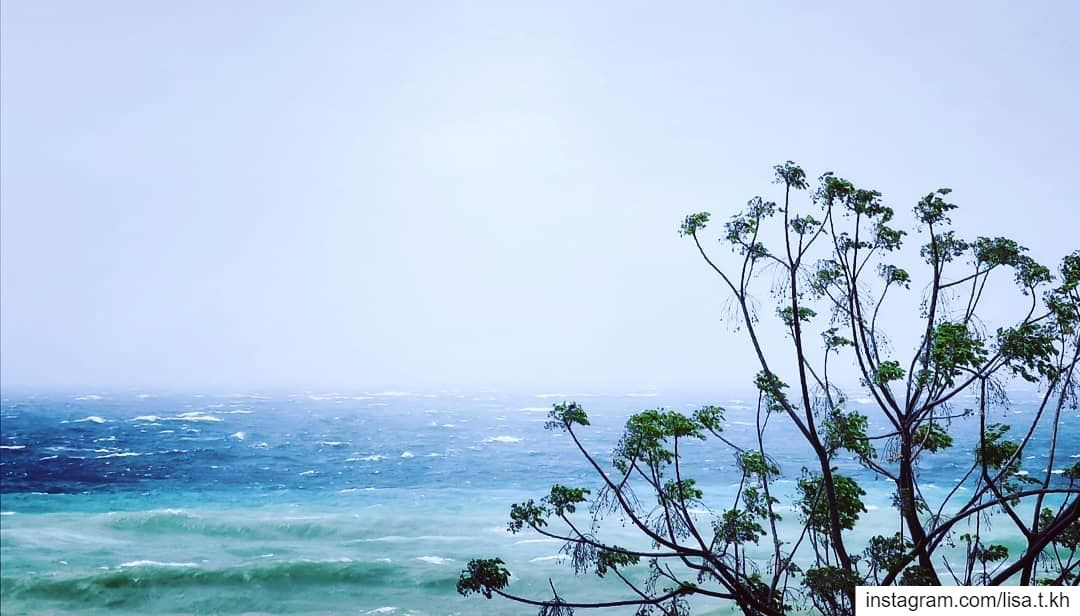 Let your whole Life be a song 🎶✨......... views explore ... (Joünié)