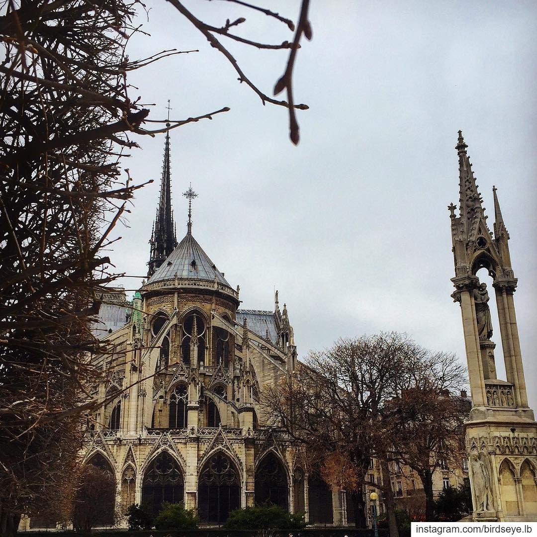 It will be back more beautiful 🙏🏼 | 2016...━ ━ ━ ━ ━ ━ ━ ━ ━ ━ ━ ━ ━ ━ (Cathédrale Notre-Dame de Paris)
