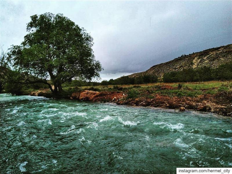 assiriver by @firassafwan hermel hermel_city bekaa lebanon_pictures ... (El Hermel, Béqaa, Lebanon)