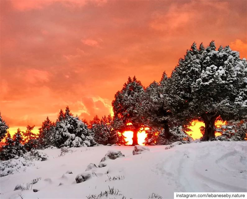 aboutyesterday whitemorning  redevening.. snow  sunset  Easter ... (Akkar)