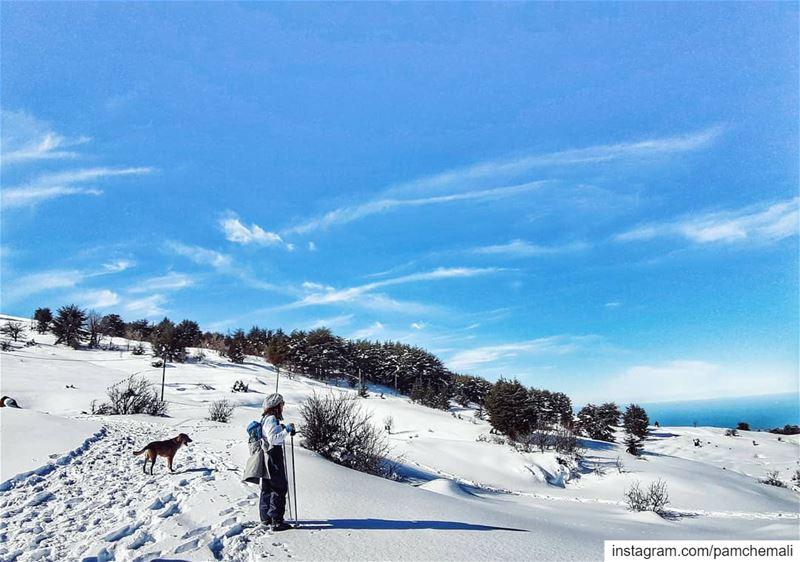 The never-ending season ☃️📸 @rawadthenomad .... whitedays ❄ tb🔙.... (Hadath El Jebbeh - Bcharré)