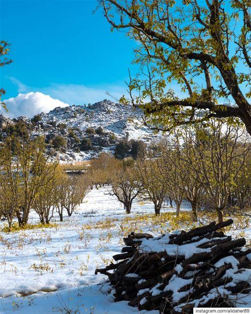Spring vs. Winter 🍃❄ Swipe➡️21/04/2019....... landscape... (Kfarhouna - Jezzine)