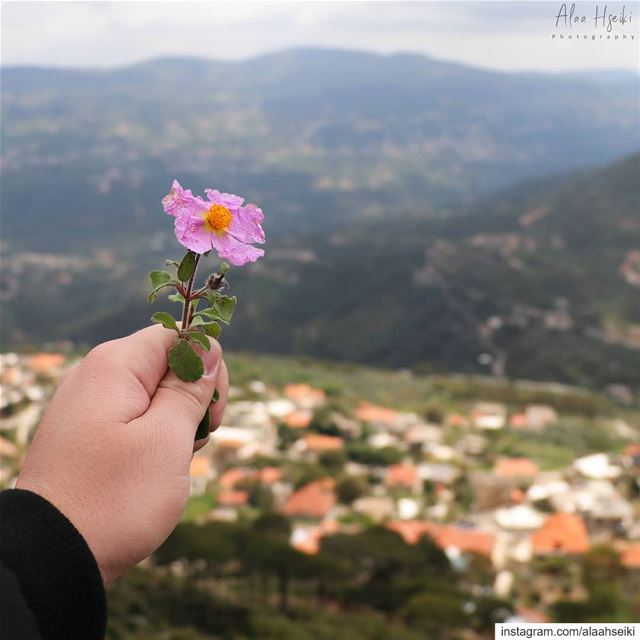 Be Brave enough to Heal Yourself even When it Hurts 🥀... Hseiki ... (Dfoûn, Mont-Liban, Lebanon)