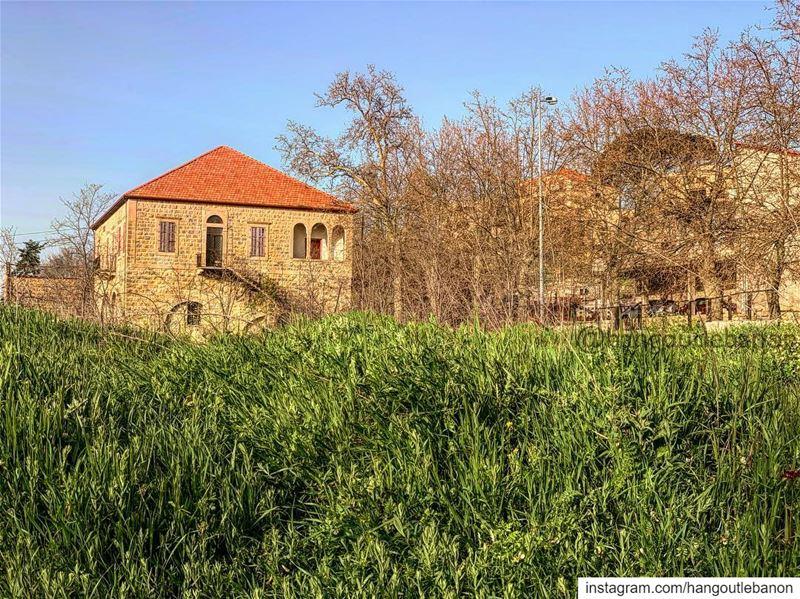A beautiful soft walk ! Sawfar- hangoutlebanon lebanonpocketguide ... (Sawfar, Mont-Liban, Lebanon)