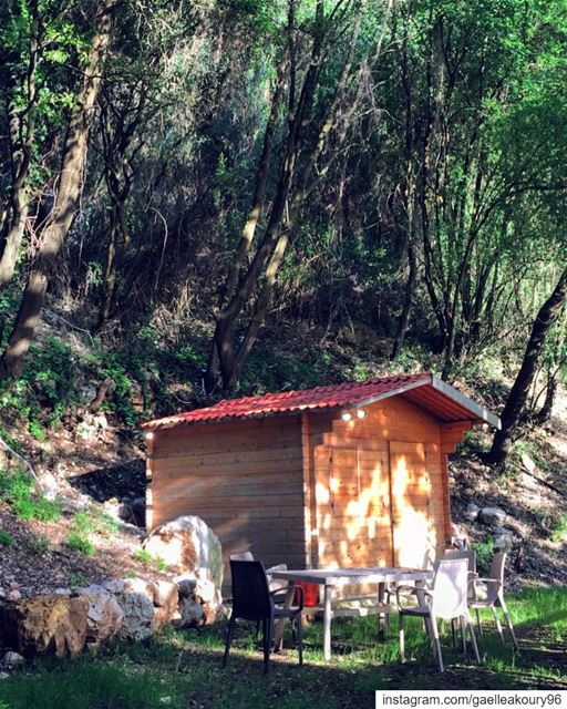 Would you live here for 6 months with no Internet and TV ? (Lebanon)