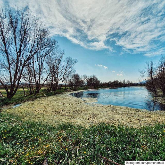 جنة من بلادي🇱🇧 ammiq wetland........ lebanonmania ... (Aammiq, Béqaa, Lebanon)