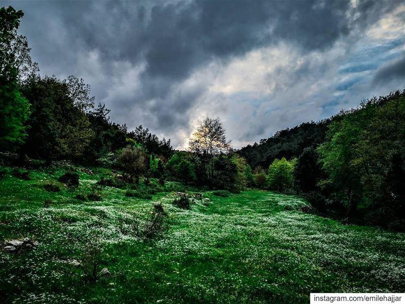 PHOTOARENA Fatalaframes MoodyGrams landscape pocket_allnature ... (Al Qubayyat, Liban-Nord, Lebanon)