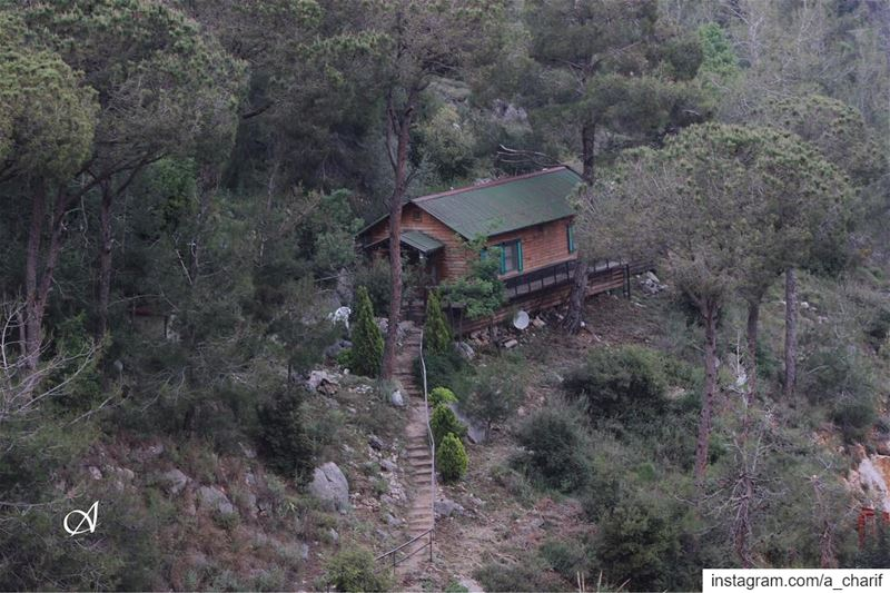 Who likes to live here? house houseinthewoods wood forest tree ... (Beit Meri, Mont-Liban, Lebanon)