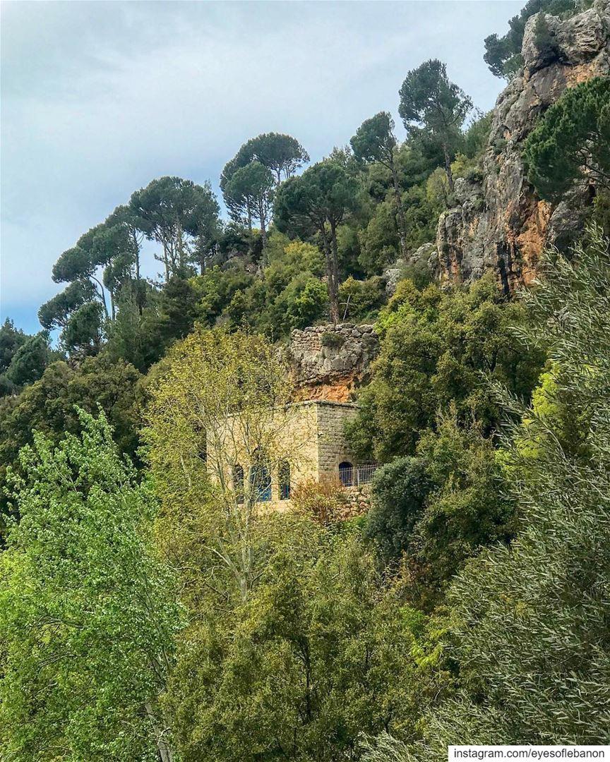 صباح الخير من وادي قنوبينCredits to @tarekhawwash・・・هنا ترقد القديسة ما (Ouâdi Qannoûbîne, Liban-Nord, Lebanon)