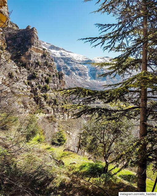 Good Morning 🌞 Lebanon Akoura 🇱🇧 LiveLoveBeirut LiveLoveLebanon ... (Akoura, Mont-Liban, Lebanon)