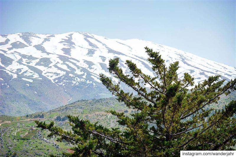 El Sheikh from our side! 💙 lebstory lebanontraveler lebanonbyalocal ... (Mount Hermon)