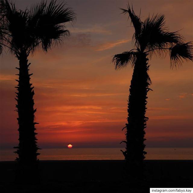 sunset sunsetlovers lebanon dbayeh sun sunset_madness master_shots... (Dbayeh, Mont-Liban, Lebanon)