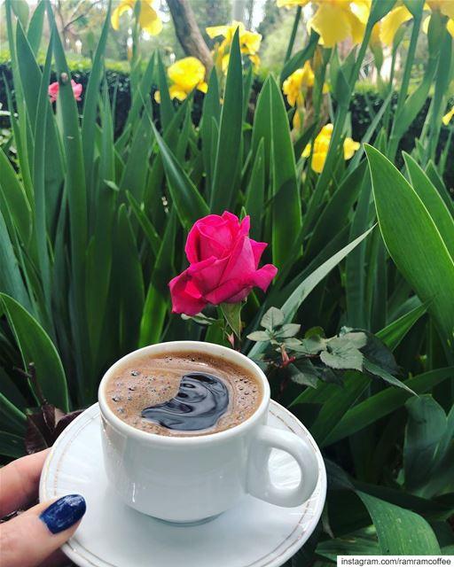 قهوة الصبح و ورد احلا من كتير اشيا بهالدني.... ramramcoffee ... (Al Marj)