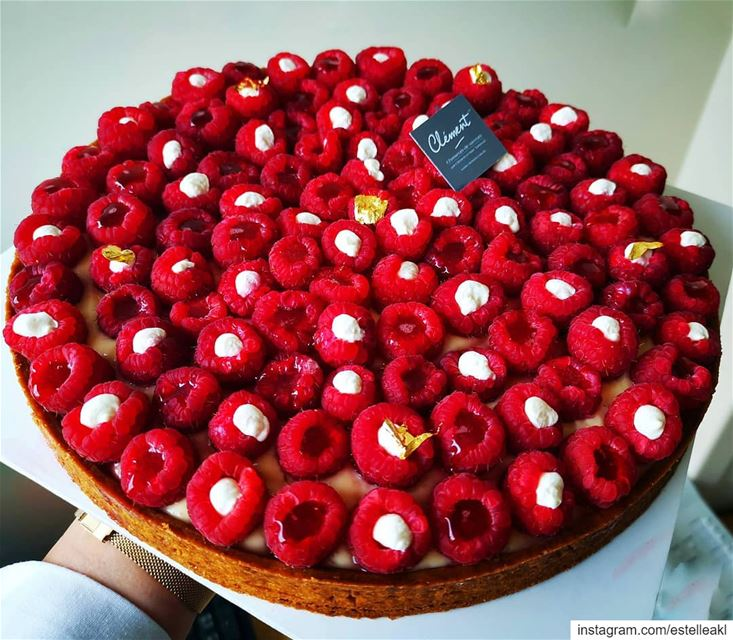 That awkward moment when a tarte is more photogenic than you will ever be � (Beirut, Lebanon)