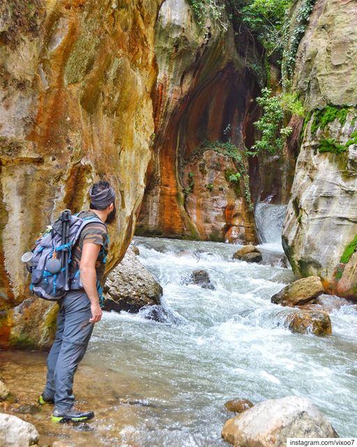 People don't take trips. Trips take people..... hikingtrails hiking ... (Inside You)