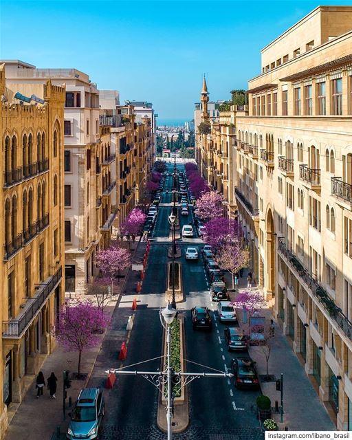 🇱🇧🇧🇷 Impressionantemente linda imagem da primavera em Beirute para... (Downtown Beirut)