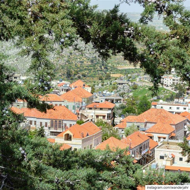 Gleams of sunshine!☀️ lebstory lebanontraveler lebanonbyalocal ... (Rashayya, Béqaa, Lebanon)