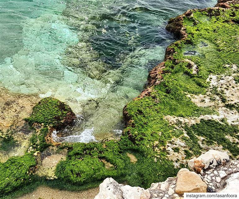 Peace infusing colour palette. mediterraneansea beach lebanoninapicture... (Amchit)