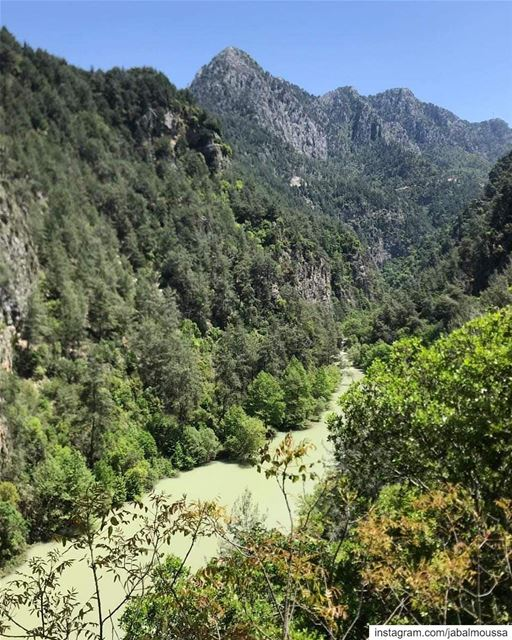 A Sunday like no other in Chouwan. JabalMoussa unesco unescomab ... (Jabal Moussa Biosphere Reserve)