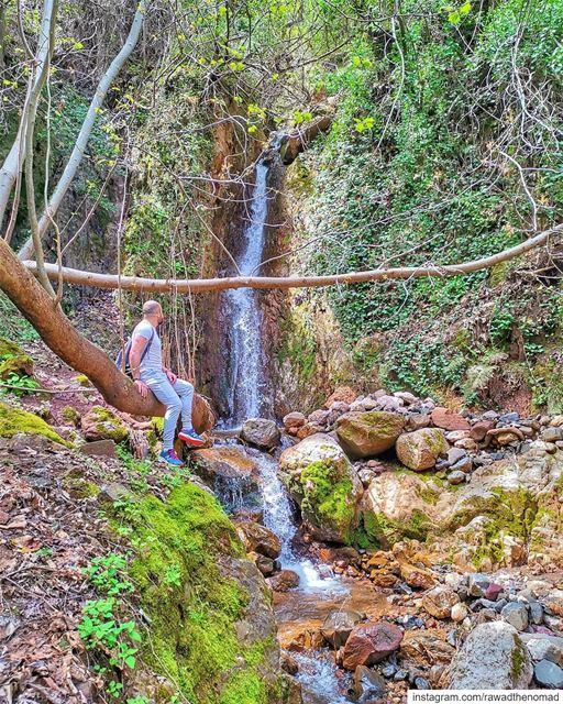 Back at it 😎.Shot taken by the amazing @pamchemali... lebanonmania ... (Ouâdi Qannoûbîne, Liban-Nord, Lebanon)