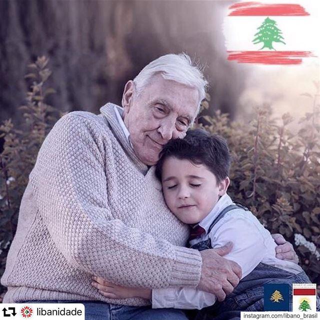 🇱🇧 repost @libanidade: sua origem é sua maior herança. Preserve as raíze