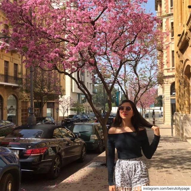 Beirut - بيروت الجمال jounieh byblos lebanon travel paris model ...