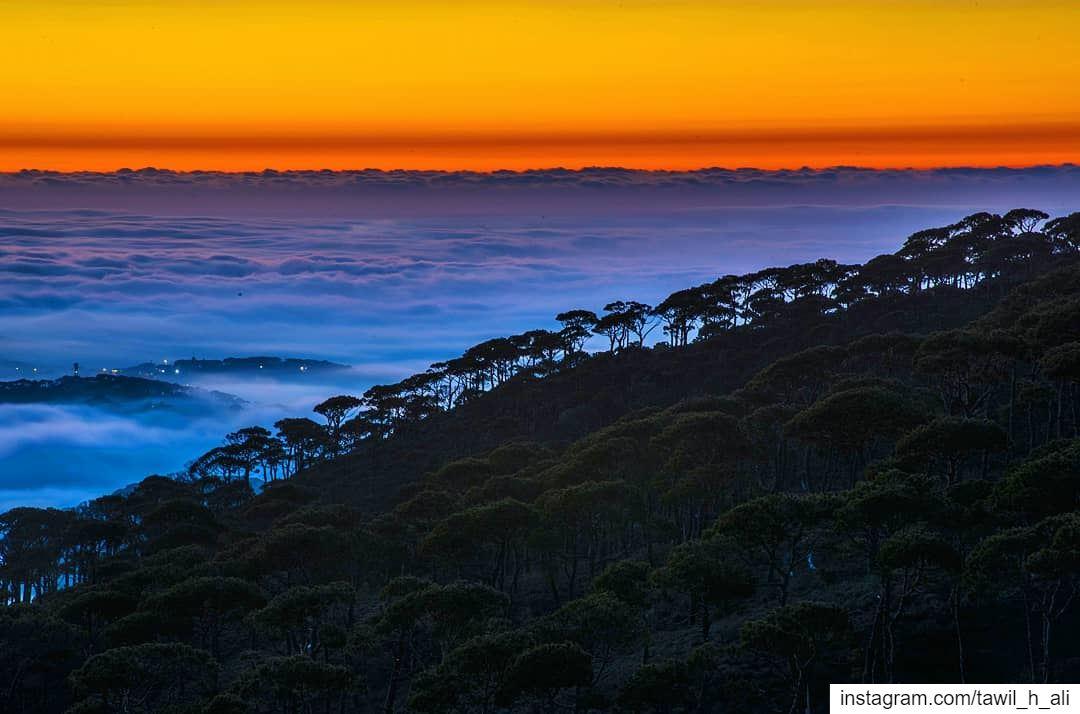 Calm Dusk 🌄------- sunset sunsetlovers dusk instapic ... (Jabal Fâloûgha)