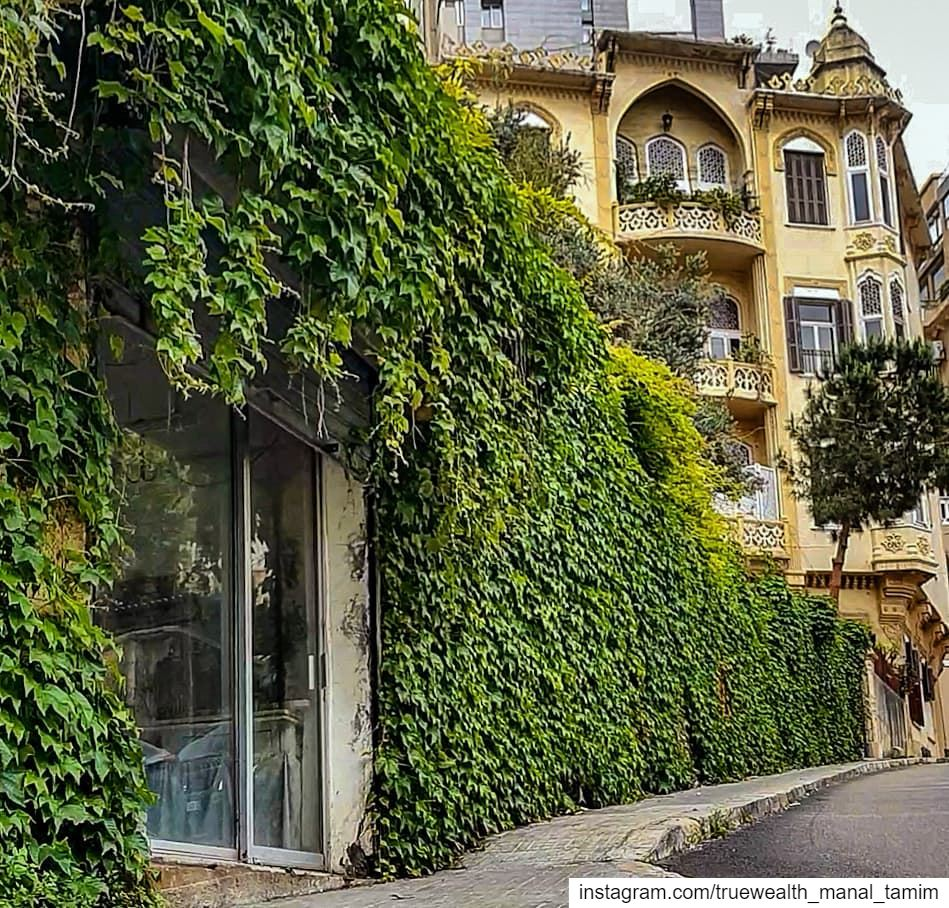 Have you been to Beyrouth before..Well,, whether yes or noBeyrouth looks... (Beirut, Lebanon)
