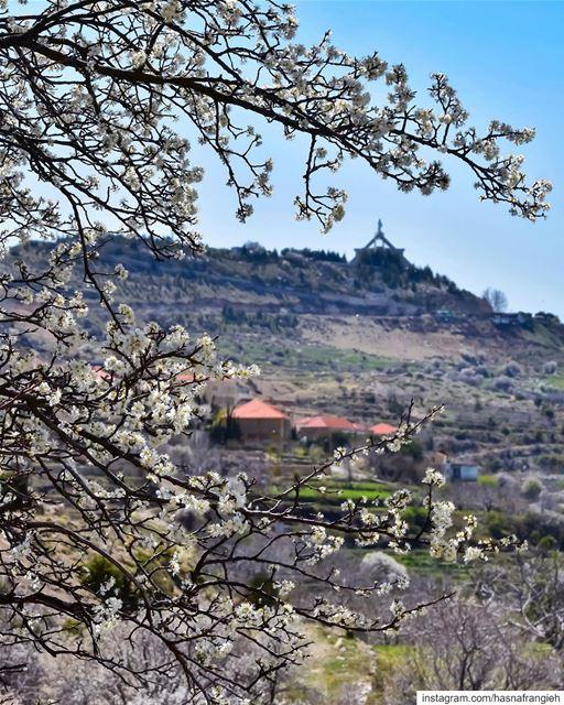 أسمَعُكَ هامِساً يا إلهي، في جمال الزُهور وتناسُق الألوان،في الصَوتِ، في... (Ehden, Lebanon)