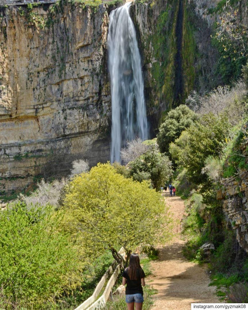 Run wild and free like a waterfall..... waterfall wild free ...
