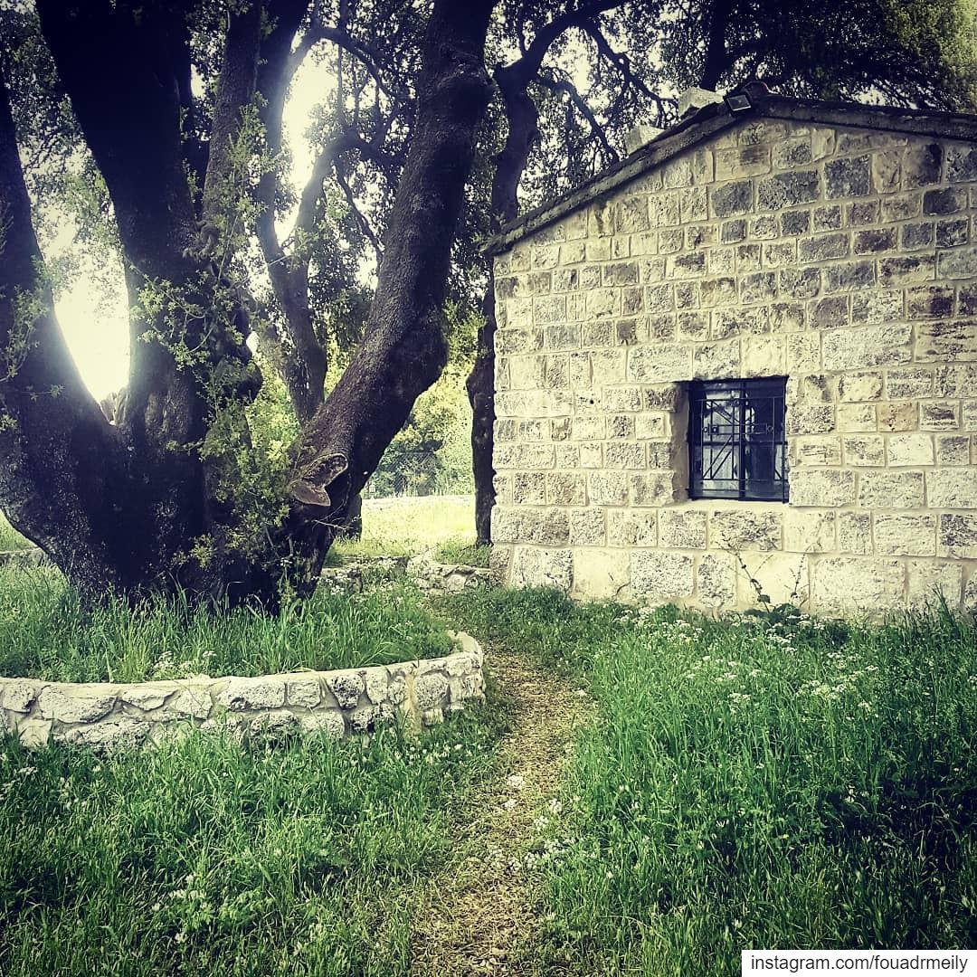 livelovelebanon❤️ livelovelebanon livelovebyblos❤️ church ... (Lebanon)
