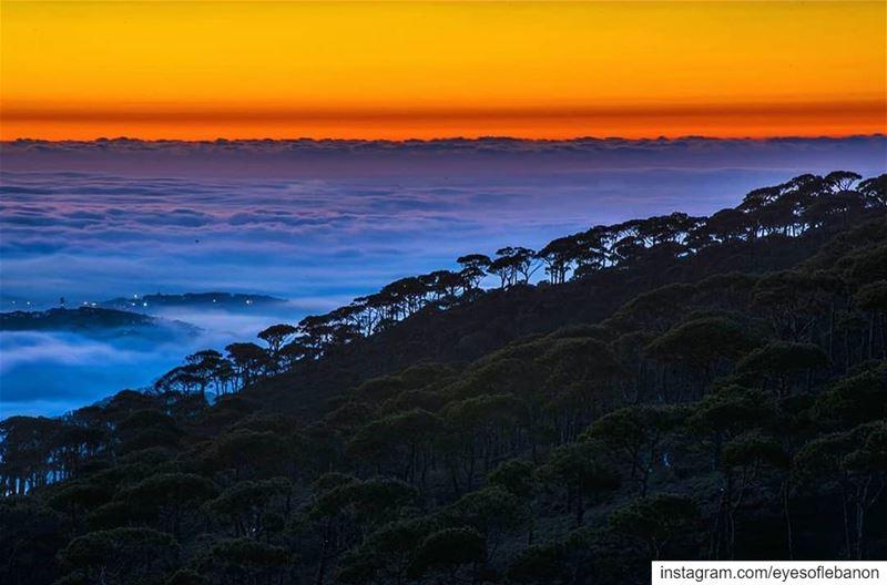 مغيب الشمس من جبل فالوغاCredits to @tawil_h_ali・・・Calm Dusk 🌄----- (Jabal Fâloûgha)