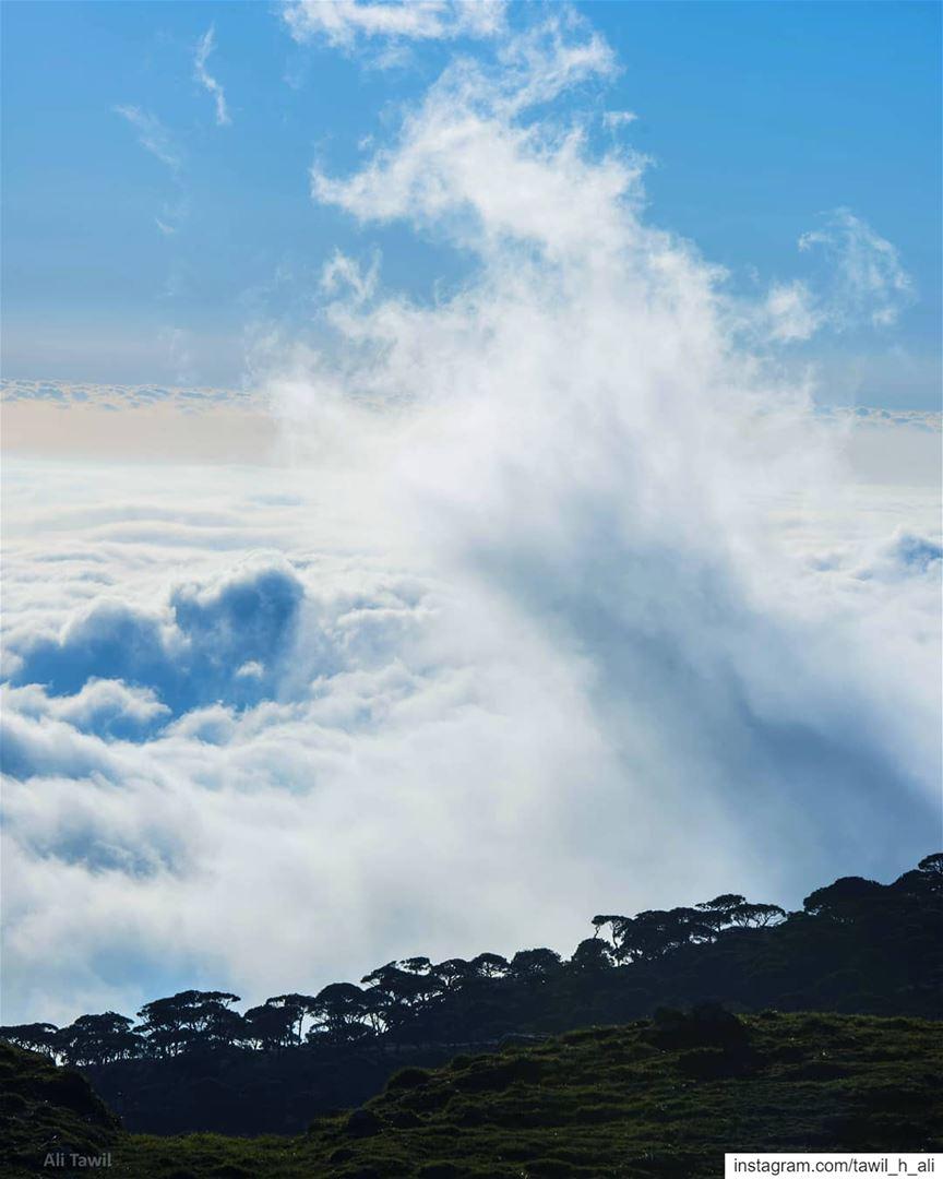 When u Reach the Sky ☁️------- landscape naturephotography ... (Falougha Mountaintop)