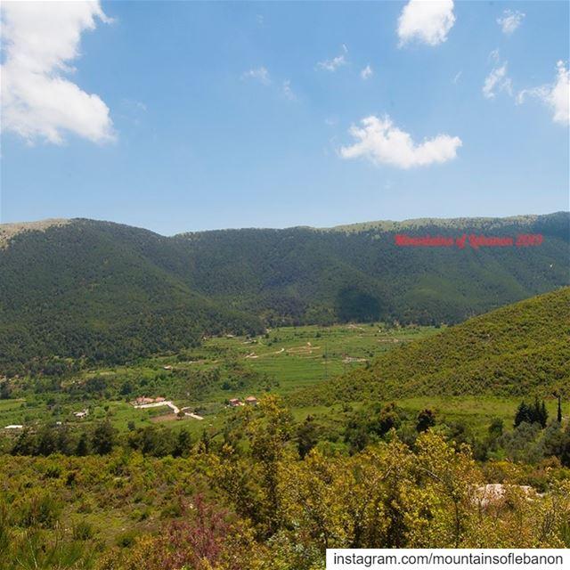 Green green hills of Aakkar!Road between Qobayat to Akroum roadtrip ... (Al Qubayyat, Liban-Nord, Lebanon)