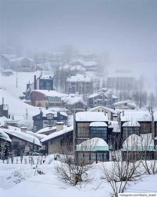 🇱🇧🇧🇷 tbt do último inverno no Líbano. Foto de @alexander_photography97 (Kfardebian, Mont-Liban, Lebanon)