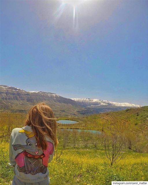 Dumbo's enjoying the sun 🐘 (Akoura, Mont-Liban, Lebanon)