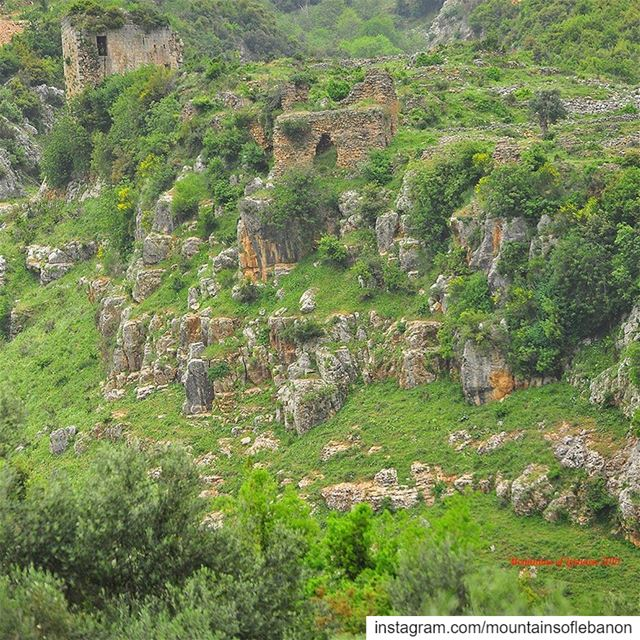 Much further from Jabal Akroum, and different time and type, the lost (Fran (`Akkar Al `Atiqah, Liban-Nord, Lebanon)