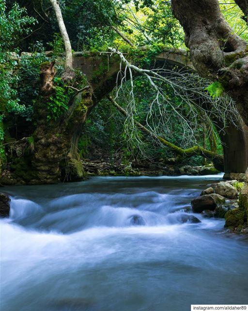 Hidden beauty 🏞....... landscapephotography naturephotography... (Chouf)