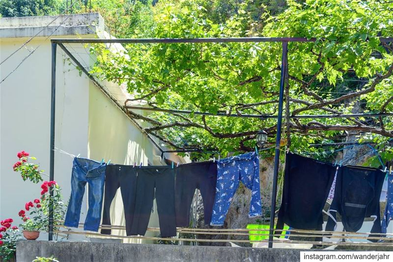 Laundry of the day! 🧥👖💙 village  laundry  terracehouse  vines  ... (Qartaba)