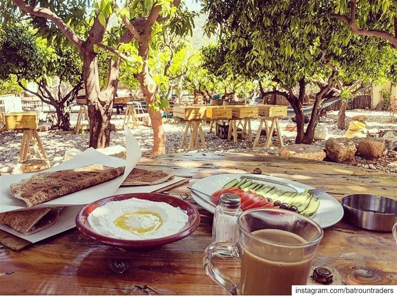 batroun البترون_سفرة morning breakfast bedandbreakfast nature ... (Mayouli Bed & Breakfast)